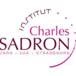 Logo Institut Charles Sadron