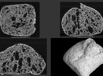 Plateforme tomographie